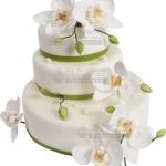 Hochzeitstorte Weiss Mit Orchideen IMG 6873 WEB