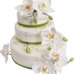 Hochzeitstorte Weiss Mit Orchideen IMG 6873 WEB 01